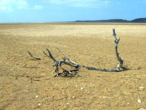 Desierto_Guajira